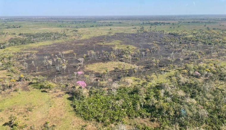 Incêndio no Parque Estadual Encontro das Águas está parcialmente controlado (Crédito: Reprodução)