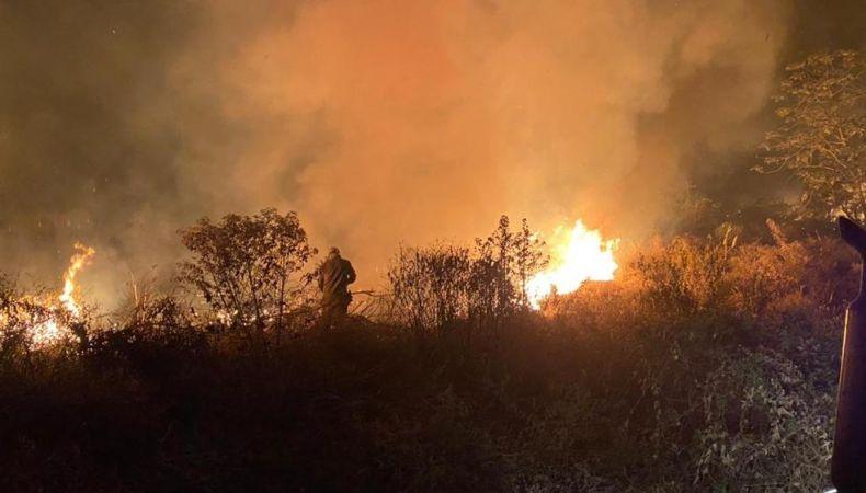 Bombeiros tentam controlar incêndio às margens da MT-251 (Crédito: Reprodução)